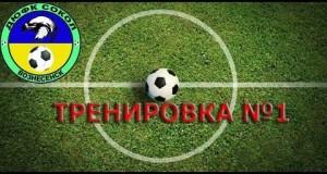 Тренировка и двухсторонка | 21.01.2017 ДЮФК Сокол Вознесенск