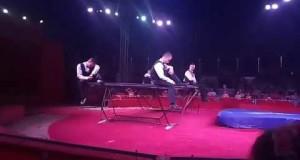 Цирк Кобзов, выступление в  Вознесенске