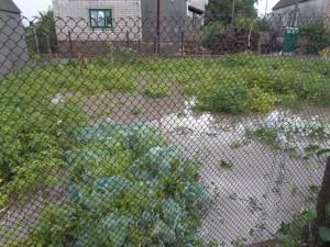 potop-13-07-2017-036