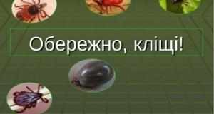 1524646049_klsch