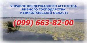 32293743_397587967319471_7433674072443060224_n