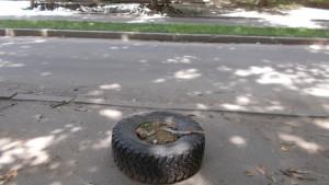 park-shevchenka-011