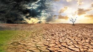 потріскана земля